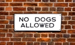 iStock_000004776638XSmall No Dogs