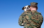 iStock_000016330140XSmall soldier hugs dog